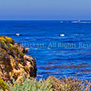Point Lobos View3576