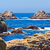 Point Lobos Rocky Coast3523