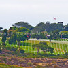 Fort Rosecrans National Cemetery5085