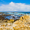 PacificGroveCoast1701