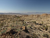 View southeast from along the Lost Palm Oasis Trail - the Salton Sean and the Santa Rosa Mountains are in view.