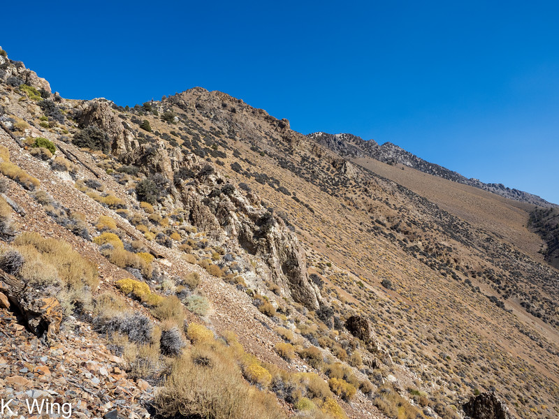 View from close to 9,000' - before I cross  over to Bed Springs Camp.