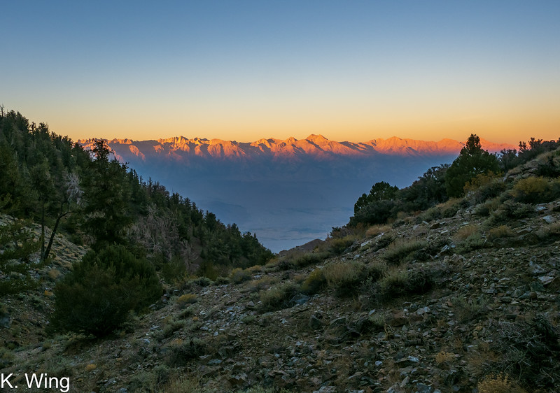 Morning light on the Sierra from above camp as I head to the Inyo - Keynot Saddle