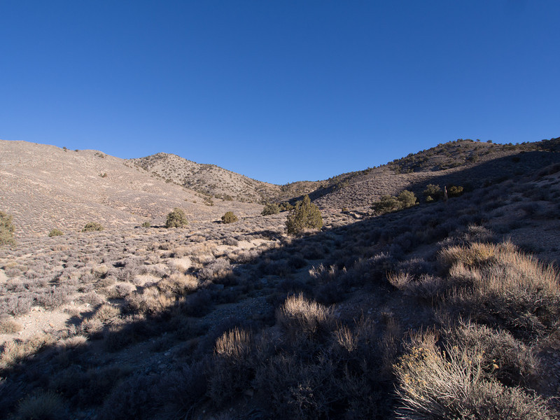 Follow the old road up the canyon until it ends and then head to the saddle in this photo.
