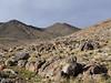 Sidewinder Peak is the Peak on the right side