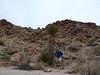 Yucca Man and Dan