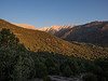 Looking up Middle Creek Canyon in the Morning
