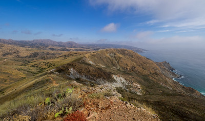 View along the ridge between Little Harbor and Two Harbors. - Orizaba Peak in the distance on the left.