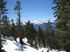 View of the Great Western Divide as I headed through the trees after Panther Gap