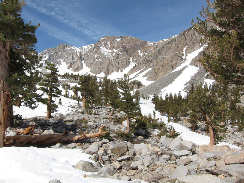I wandered up this gentle tree covered ridge between the two gullies until I found a nice campsite at 9800' that looked safe.  The rockfall off the east side of Perkins was pretty extensive - those rocks just kept dropping; so I didn't want to be camped anywhere I was in danger from rockfall.