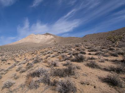 Backus Peak - 1.3.14
