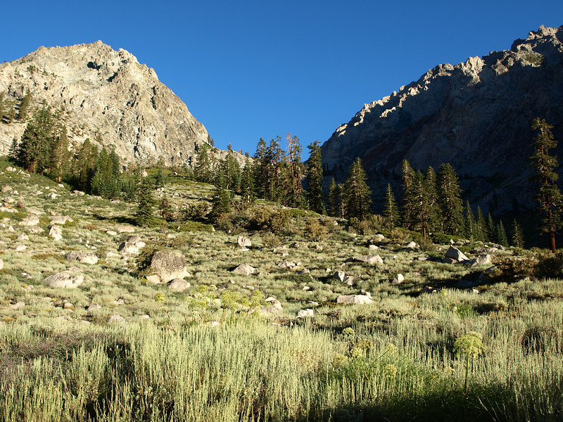Heading up the trail that goes to Golden Trout Lakes in the morning.
