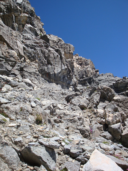 I decide to head up the mountain before I get to the cliffs (headwall) at the end of the talus filled slope.
