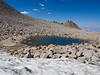 Glacier Tran at Lamarck Col
