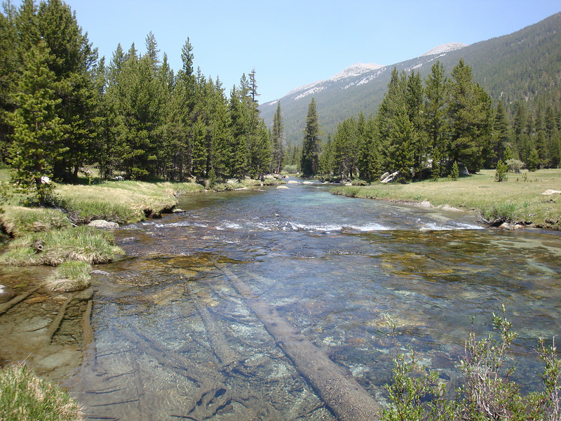 Lyell Fork of the Tuolumne River