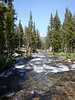 Lyell Fork of the Tuolumne River - faster now.