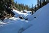 Snow bridges over Silliman Creek.