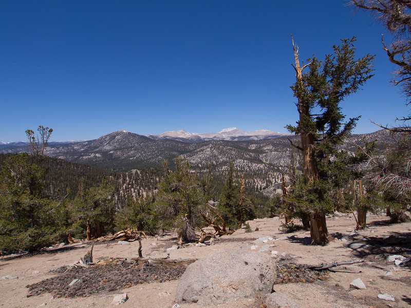 Trail Peak, Cirque Peak, and Mount Langley in the distance.
