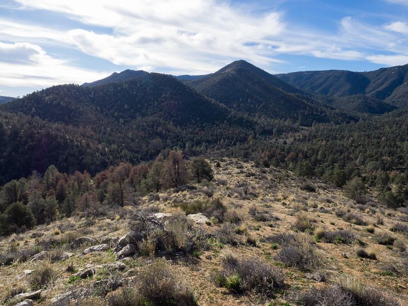 Looking back down at Jacks Creek as I head up the hill toward Pinyon Peak