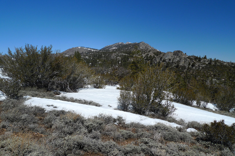 Looking north toward Olancha Peak as I head south along the PCT toward Round Mountain.