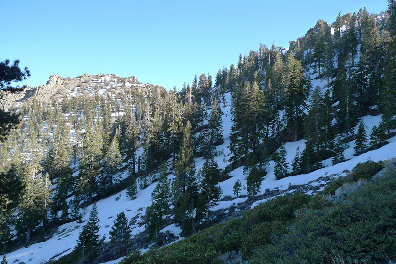 Snow up near the 8600' saddle.