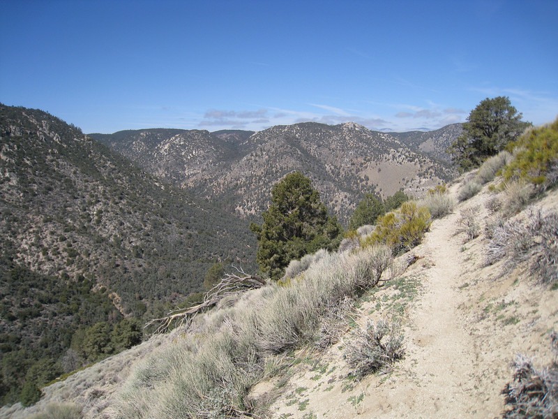 Heading southerly along the PCT