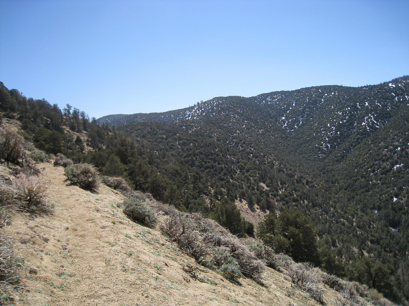 I stay on the PCT until the ravine to the left of center ahead.  Once I get to the ravine I head up it to pick up the ridge that leads to Scodie Mountain.