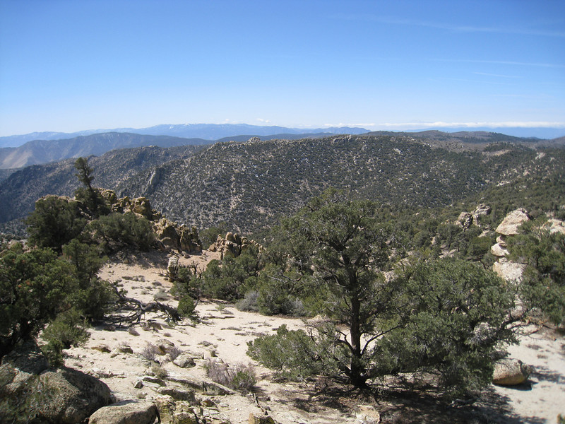 View westerly from the summit of Scodie.