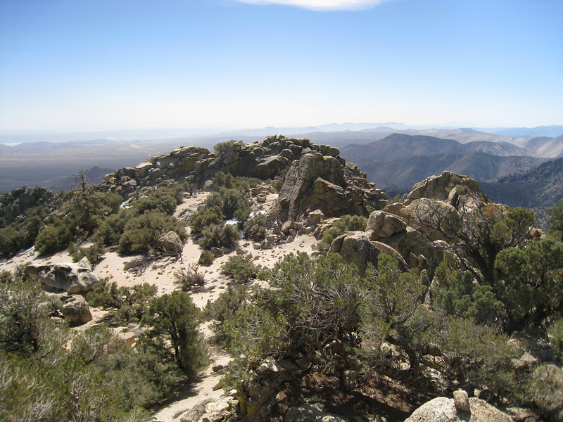 View southerly from the summit of Scodie.