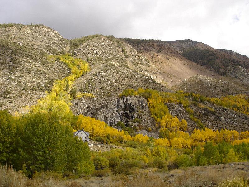 Fall Colors Along 168