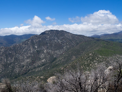 Looking back at Black Mountain from Split Mountain