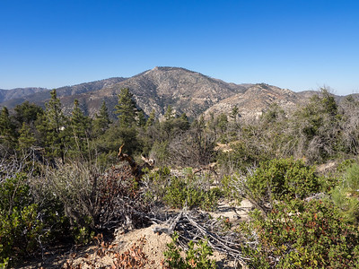 View of Pacifico Mountain from near Mount Hillyer