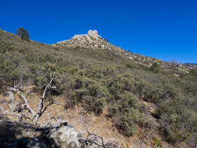 Getting Closer to Cone Peak - there is a good use trail to follow most of the way.