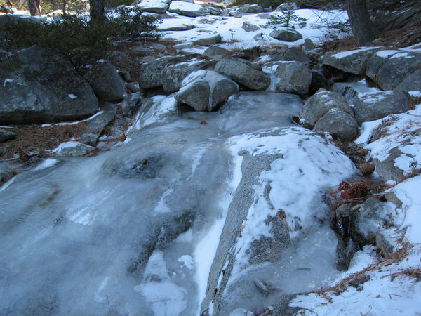 Ice along the Marion Mountain Trail.