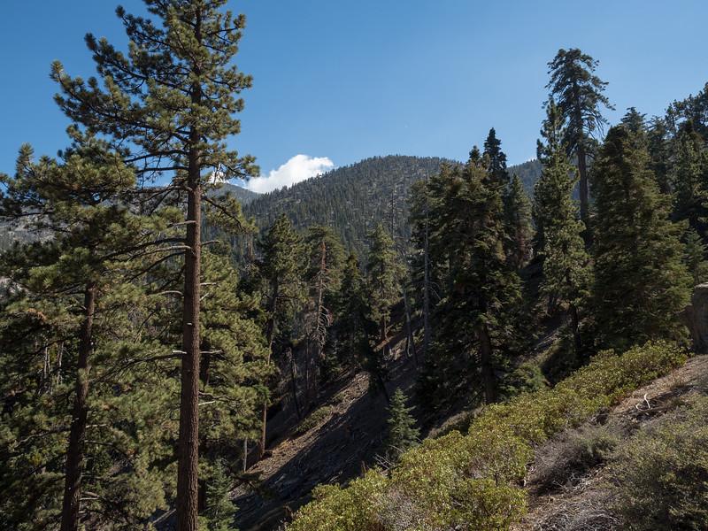 Gerhardt Peak