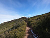 The summit of Garnet Peak in the distance.