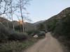 Along Sisar Canyon Road