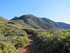 Topatopa Bluff's highpoint