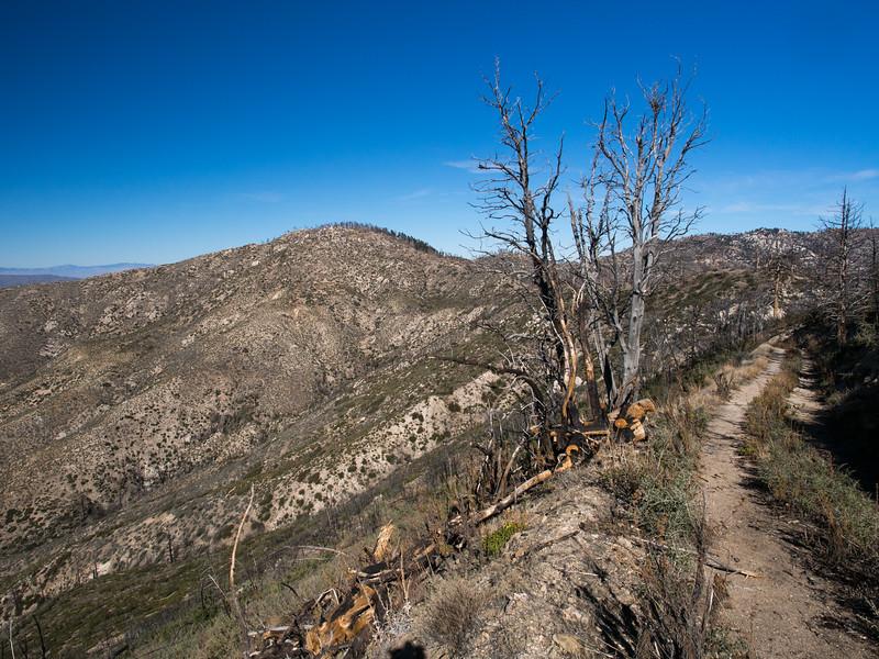 Granite Peak ahead