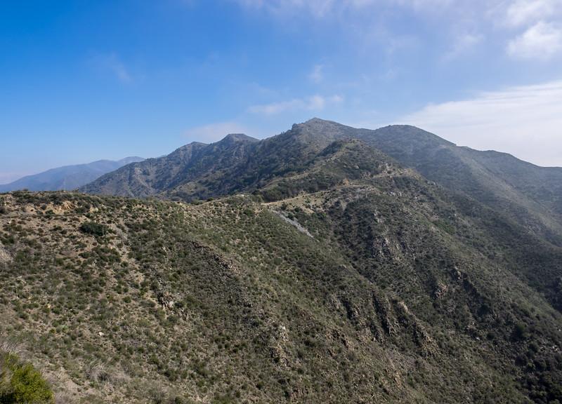 Along Mendenall Ridge Road - Heading to Iron Mountain Saddle and McKinley Mountain
