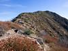 Along the Ridge to Mount Lawlor