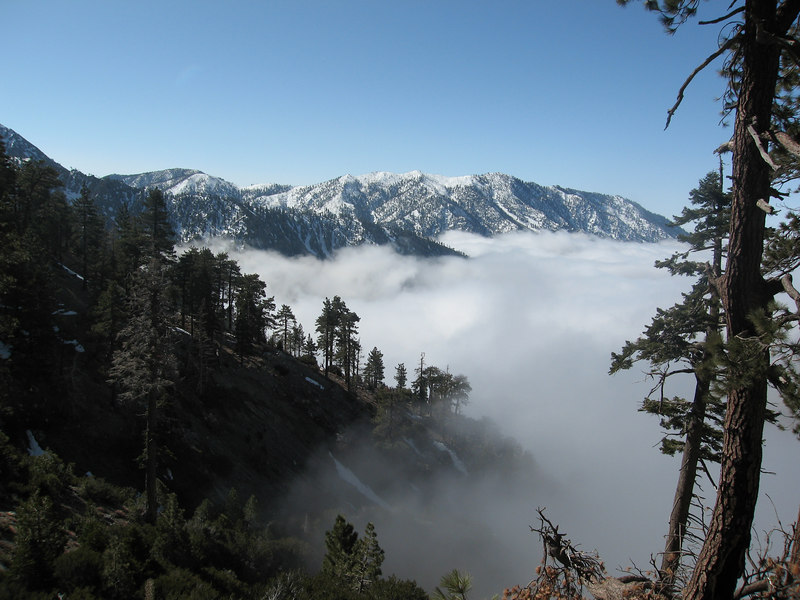 The Cucamongas from the Ski Hut Trail.