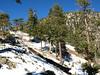 Snow along Register Ridge.