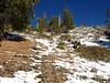 I'm now up at about 9000' on Register Ridge and I'll hook into the Devil's Backbone Trail at about 9300'.
