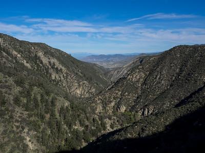 Rouse Hill in the San Bernardino Nat. Forest  3.20.16