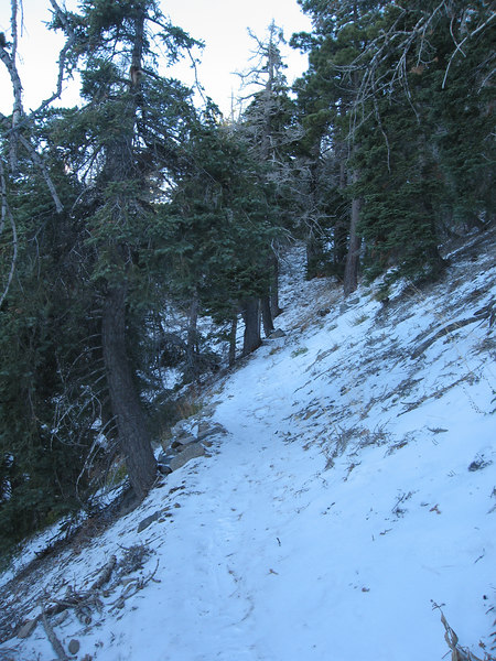 The snow and ice started near the trailhead.