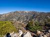 Mount San Antonio and Harwood