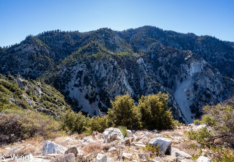 View toward Ontario Peak