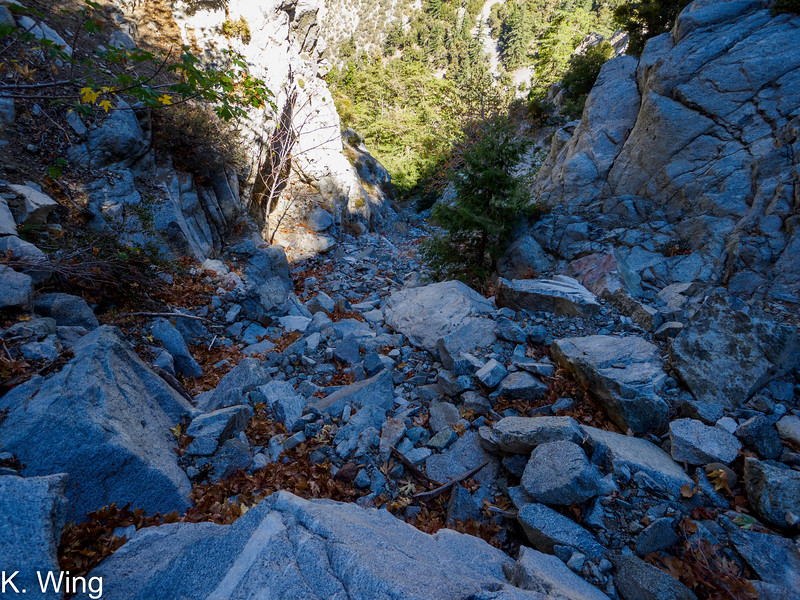Another look down Falling Rock Canyon