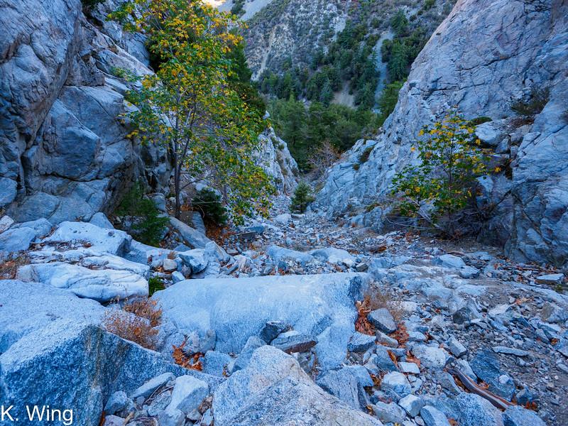 Looking down Falling Rock Canyon